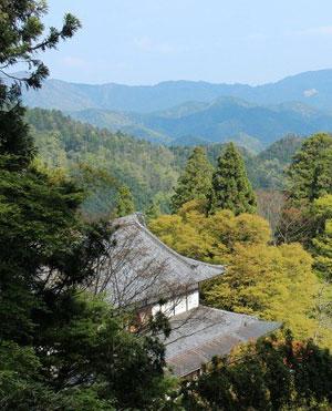 Photo of View from Mount Kurama