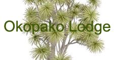 Okopako Lodge